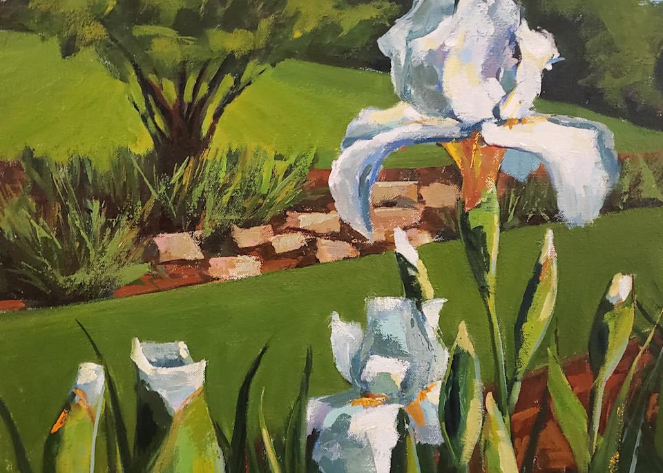 Presby Iris Garden Iv  Art | Jenn Hallgren Artist