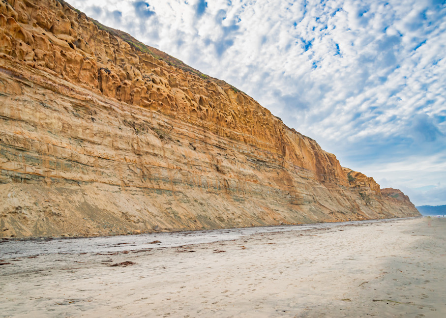 Torrey Pines Cliffs, La Jolla, CA | Susan J Photography