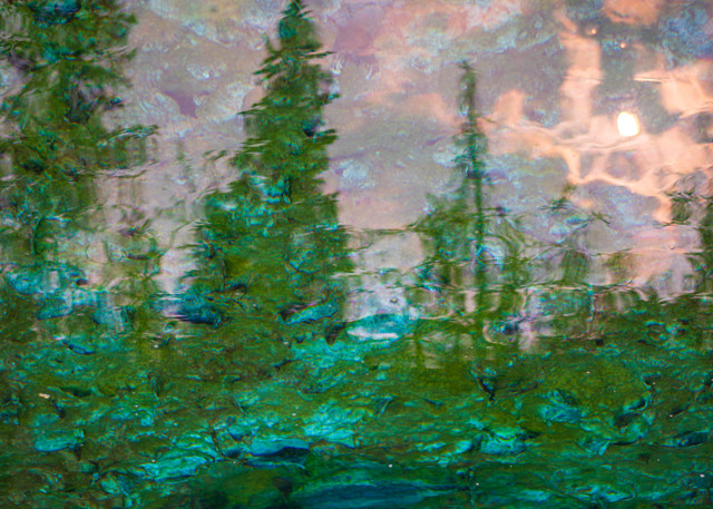 Fragile Reflection #1 Art | James Alfred Friesen