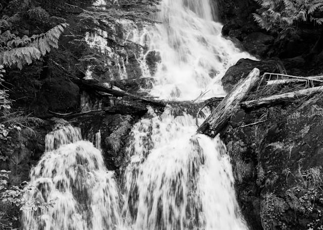 Waterfall, Falls Creek, Mt Rainier National Park, Washington, 2021