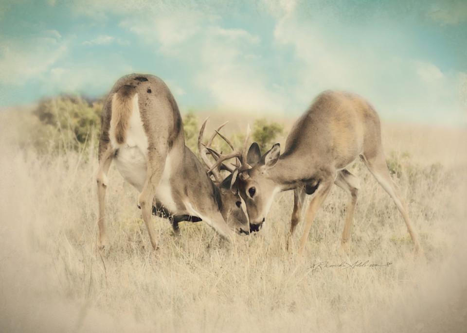 Rutting Bucks  Art