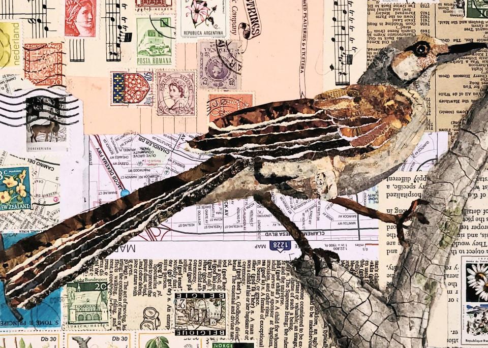 Backyard Birds: Northern Mockingbird Art | Poppyfish Studio