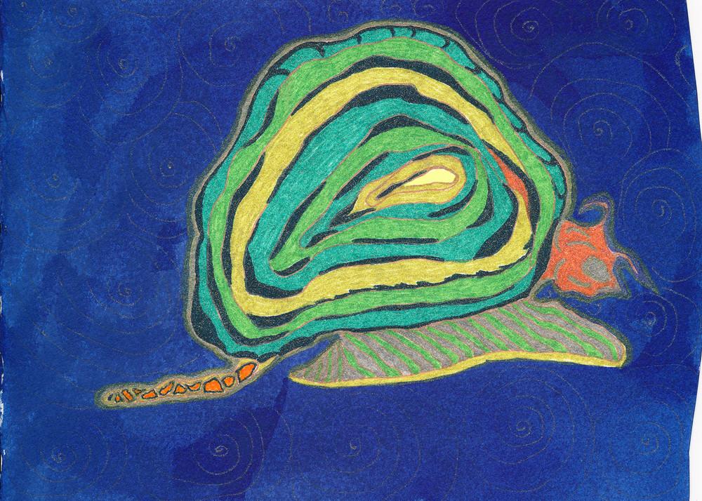 Snail Art | Pam White Art