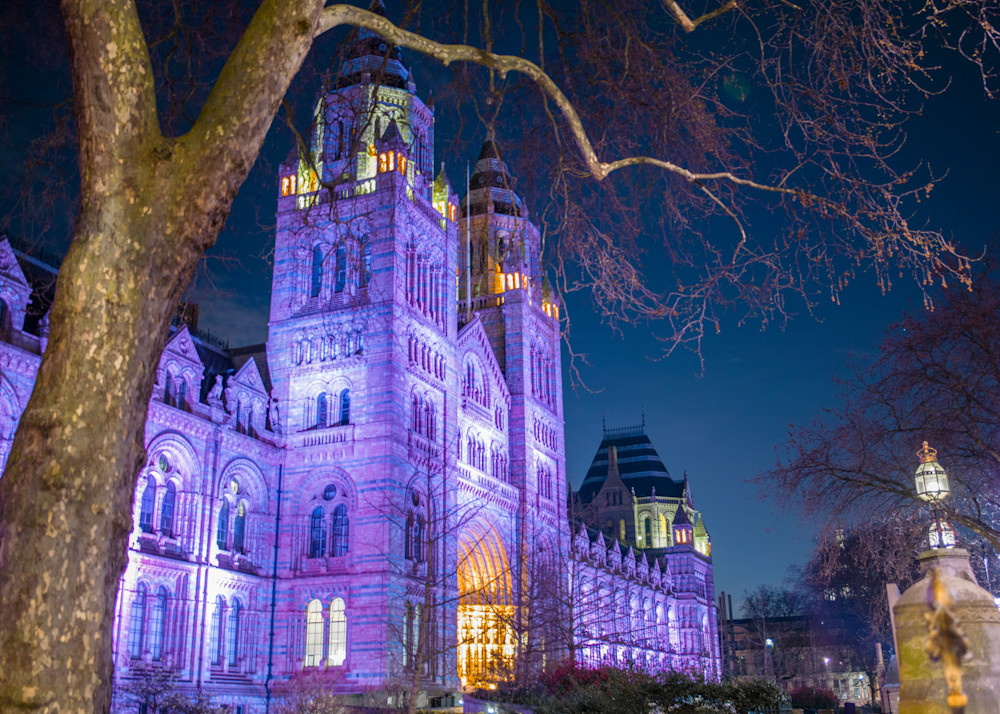 Natural History Museum | London Art Photography Print