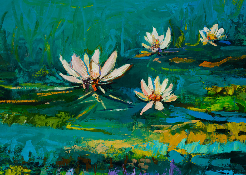 White Water Lily Prints Sale