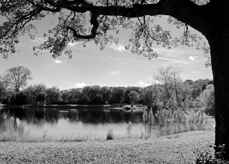 Farmland 14 Photography Art   Drone Video TX