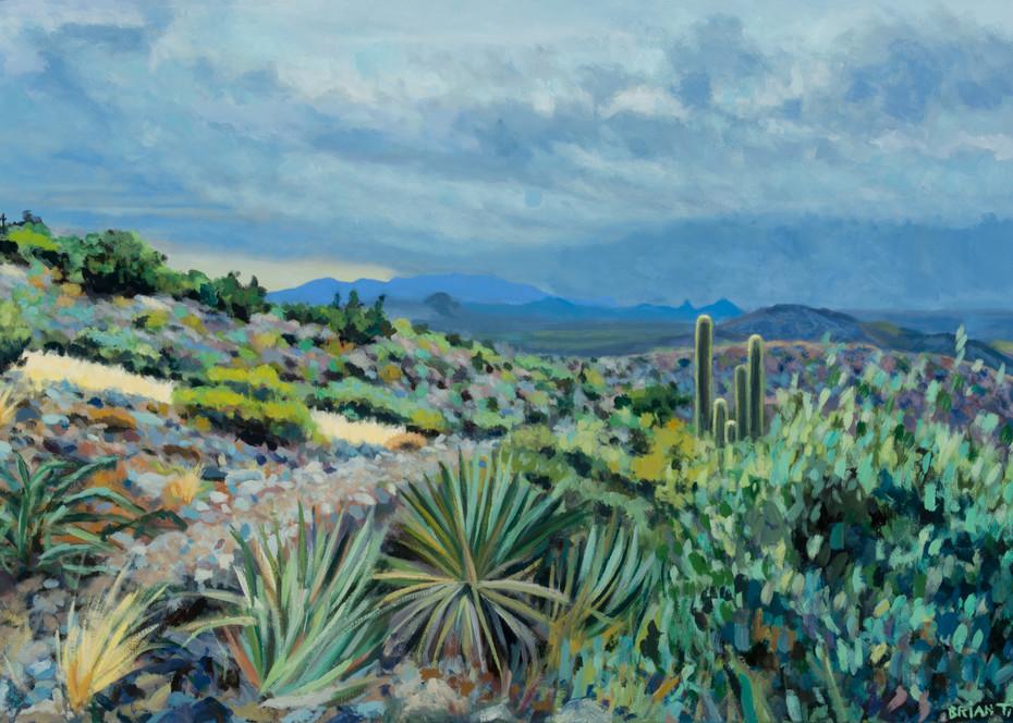 A Desert Mountain View
