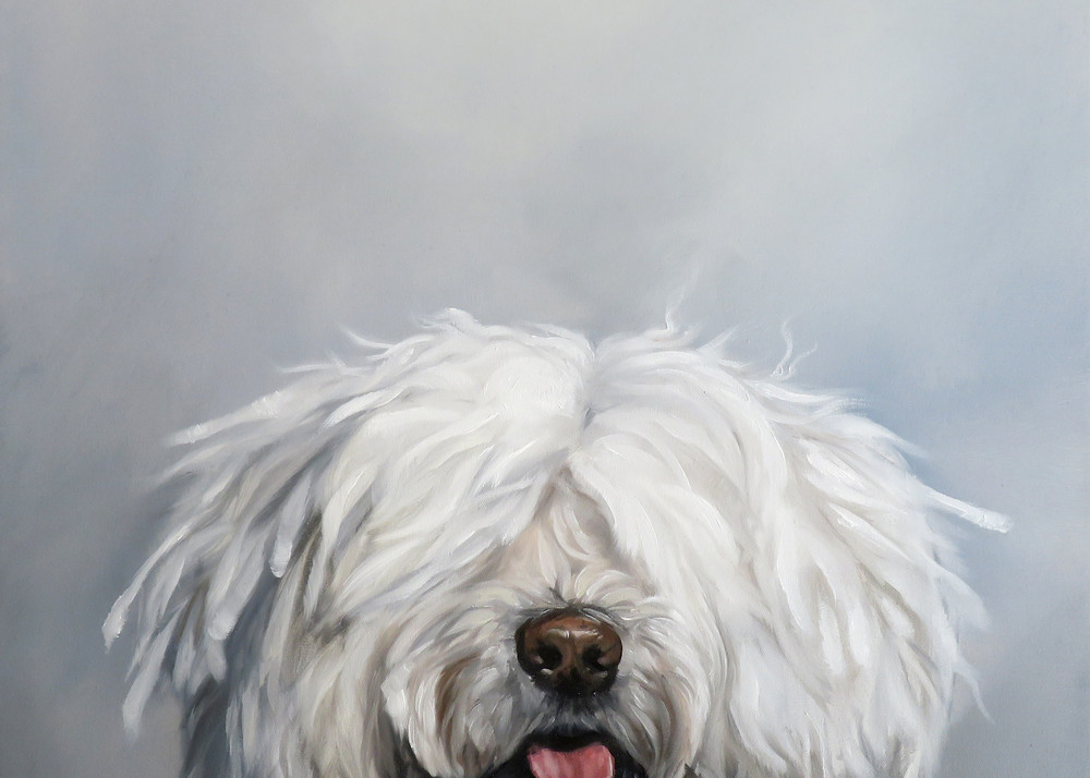 Shaggy Dog Story Dog Oil Painting by Zann