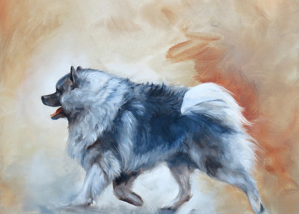 Keeshond On The Go Art | Van Isle Dog Art