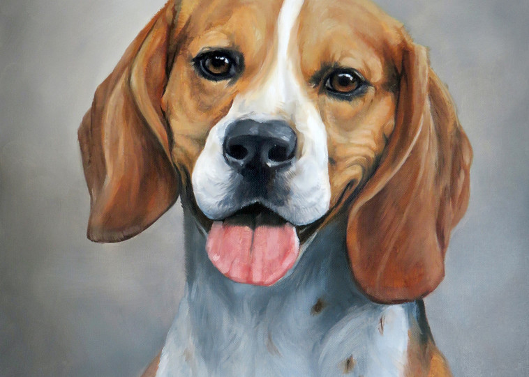 Beagle Dog Portrait, Oil Painting Artwork by Zann Hemphill