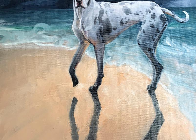 Dolly Dares The Weather Art   Van Isle Dog Art