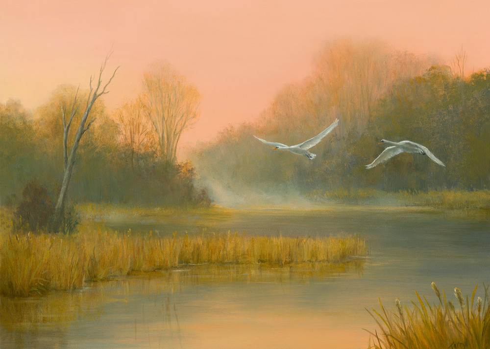 Autumn In The Marsh With Swans Flying Overhead Art   Tarryl Fine Art
