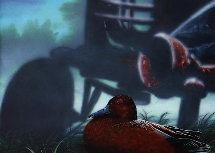Cinnamon Teal a fine art print of Montana waterfowl by Joe Ziolkowski