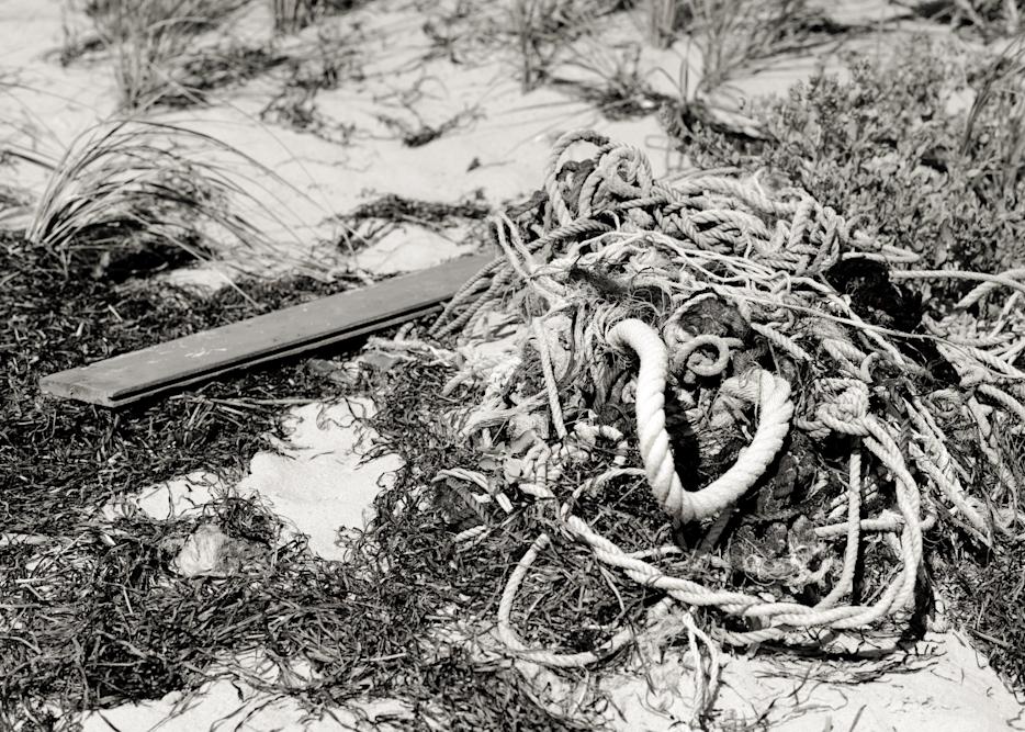 Tide Wrack Photography Art | Eric Hatch
