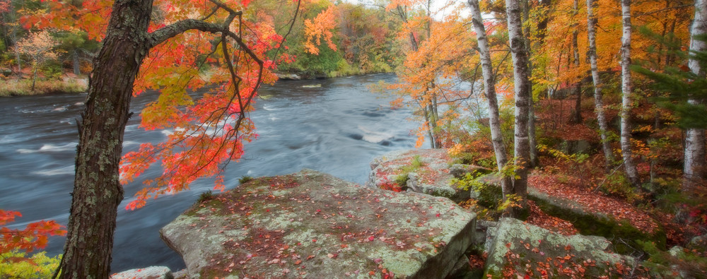 Dreaming of Autumn in Banning State Park