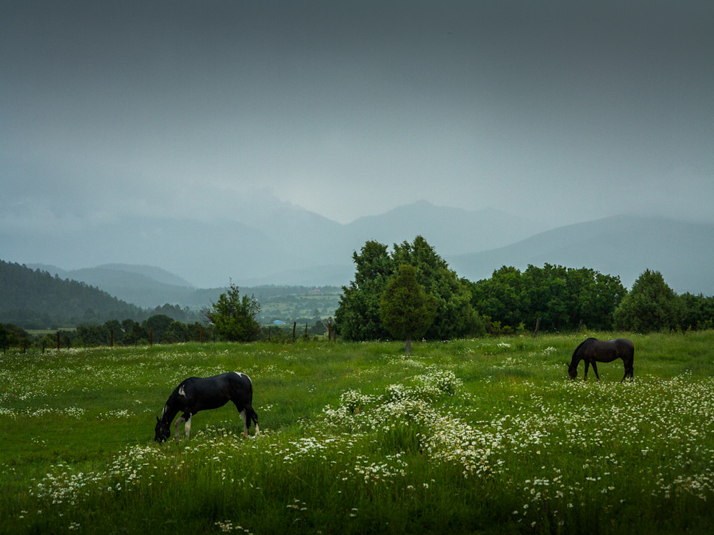 landscape, photography, New Mexico, Truchas, Southwest