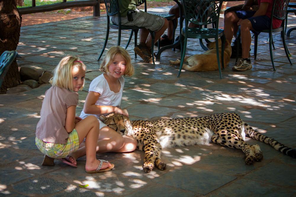 20101216-cheetah-cuddles-img-2288-idibh4