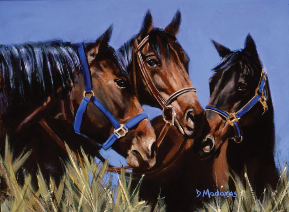 Horse Talk | Southwest Art Gallery Tucson | Madaras