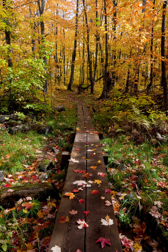 An Autumn's Hike along the Superior Hiking Trail