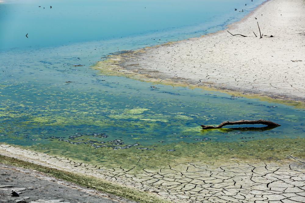Dry Shoreline at Sonny Bono Salton Sea National Wildlife Refuge Photograph for Sale as Fine Art