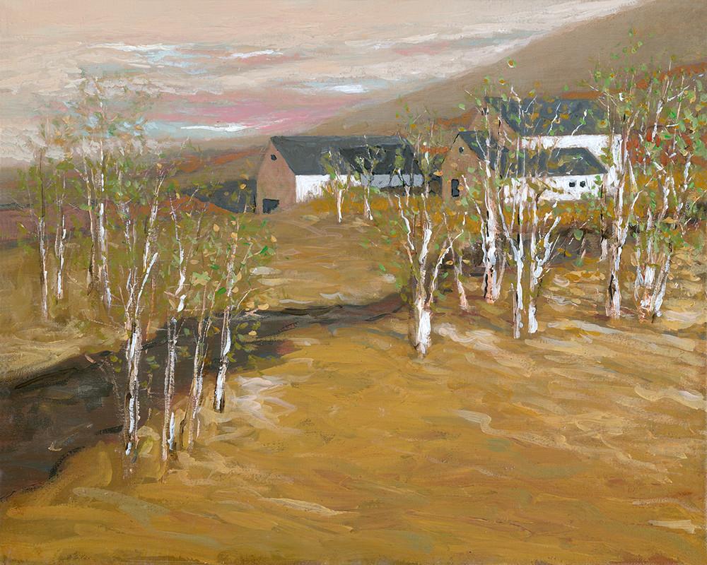 Birch Tree Farm