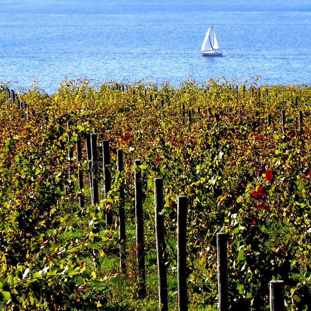 """A Little Wine, A Little Wave"""