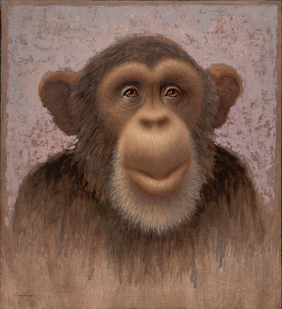 Chimp Art | Fine Art New Mexico