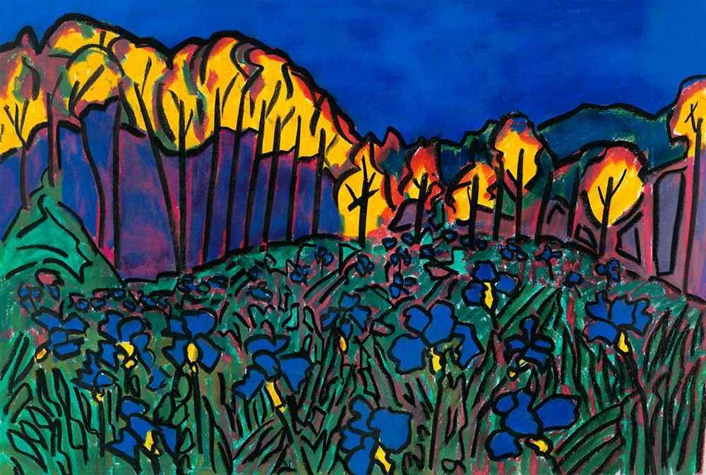 Blue Irises Art | Fine Art New Mexico