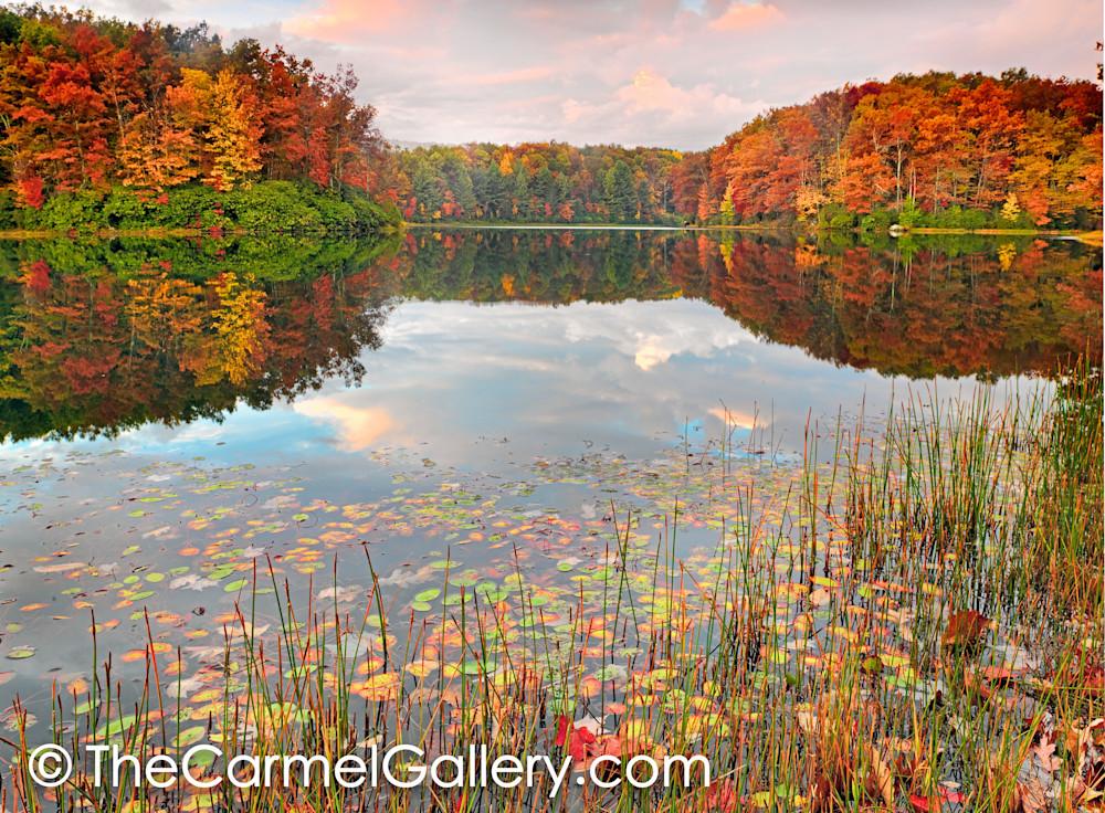 Autumn Kaleidoscope V
