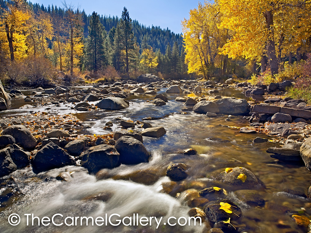Autumn Sunshine, Truckee River