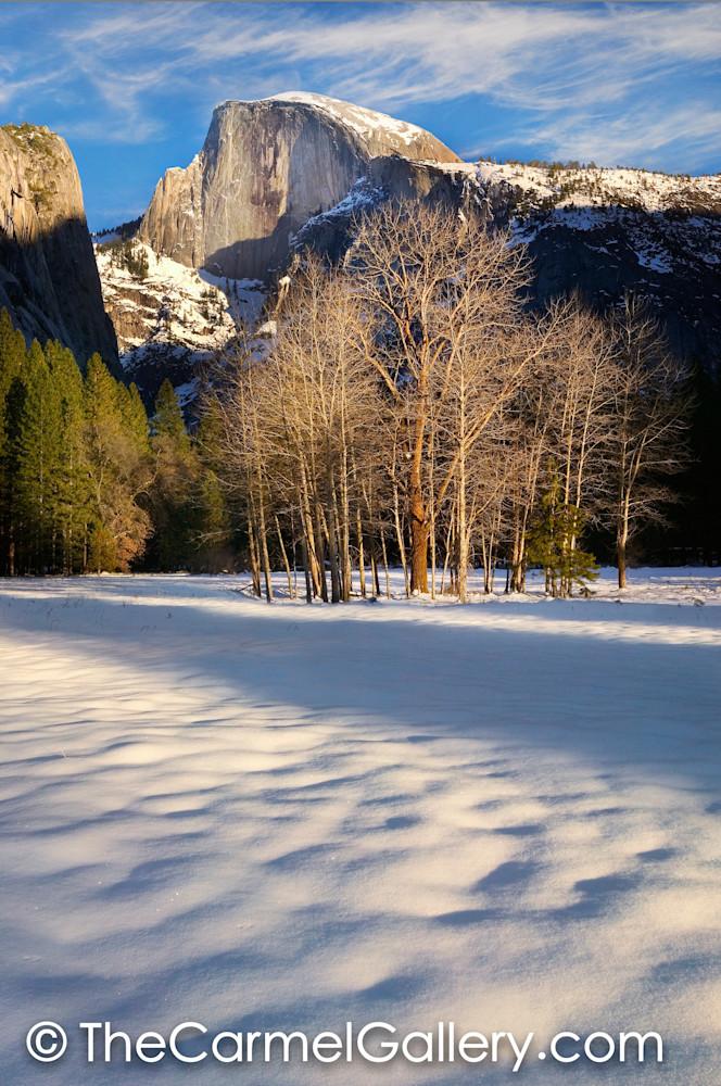 Winter Evening, Yosemite