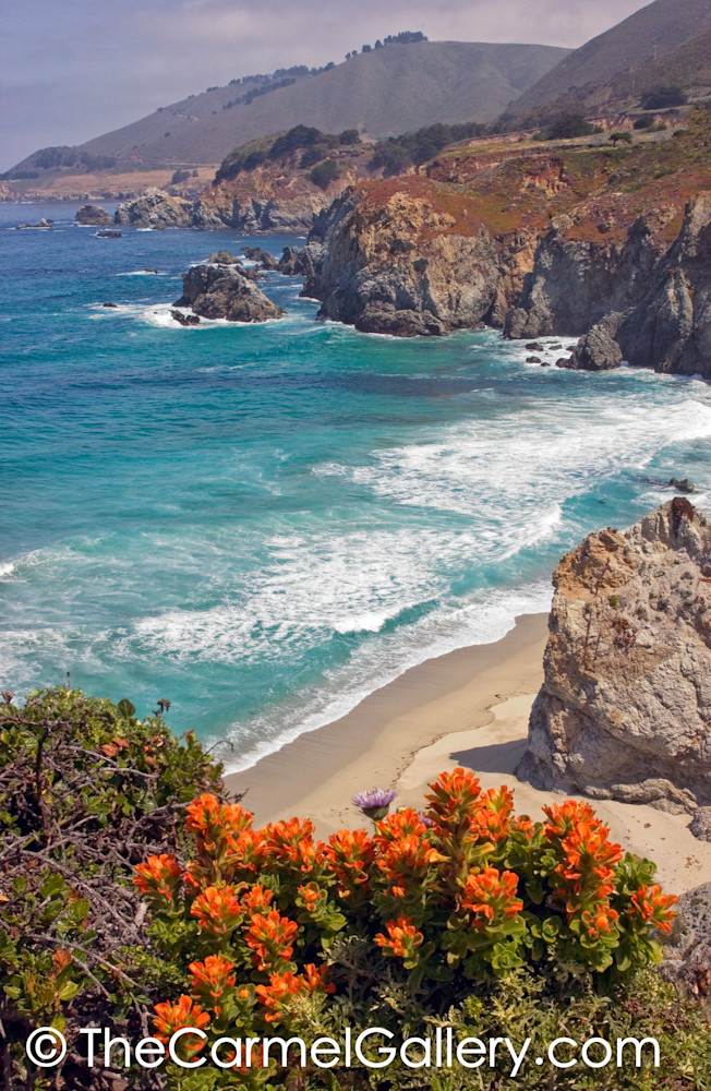 Big Sur Coast in Spring