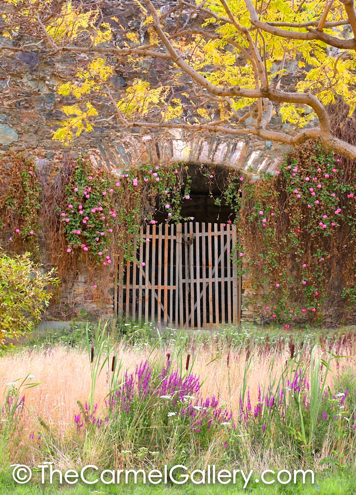 Gate of Ages