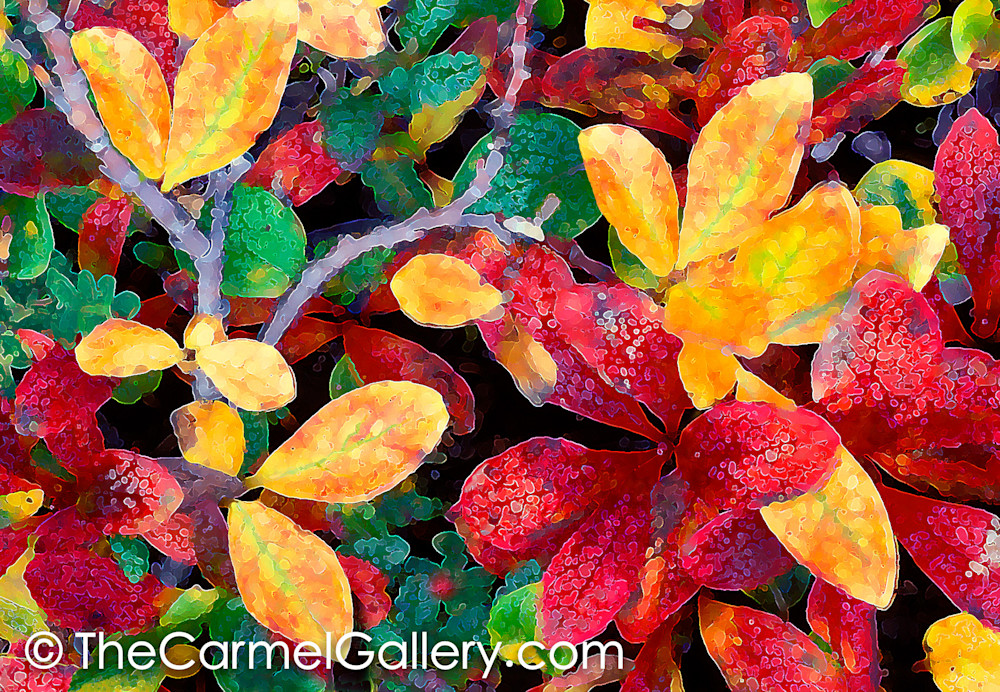 Autumn Tundra