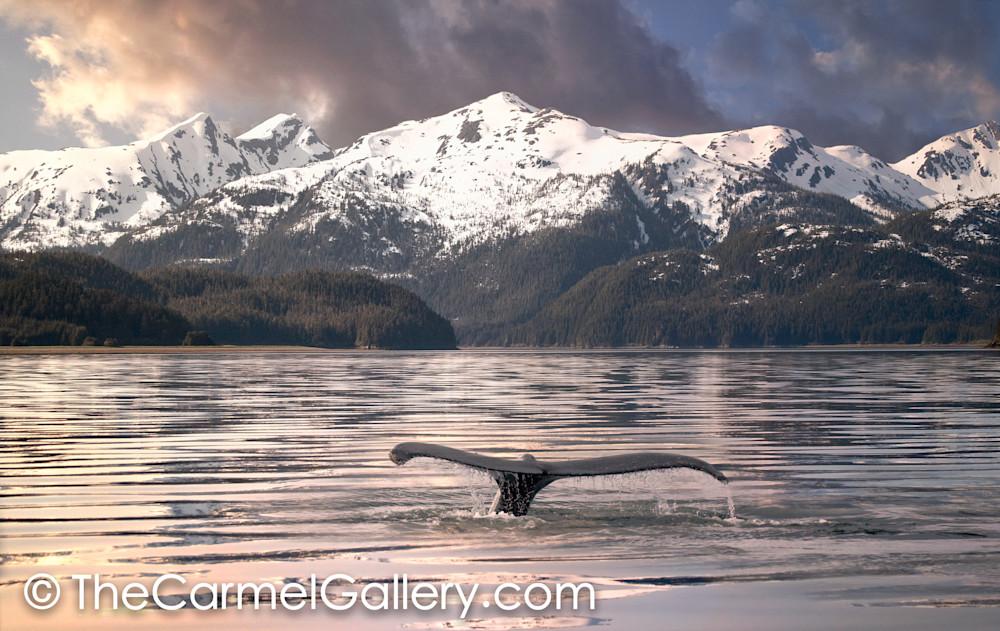 Calm Waters Alaska