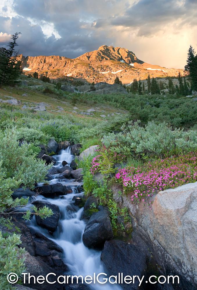 Sunrise Carson Pass