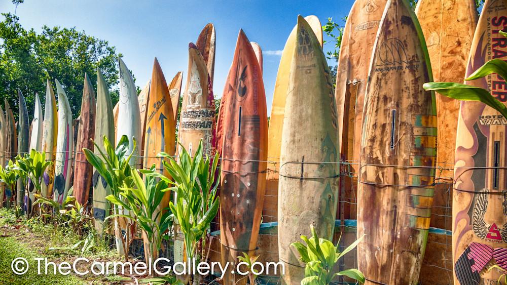 Surfboard Shimmer