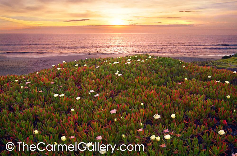 Sunset Half Moon Bay