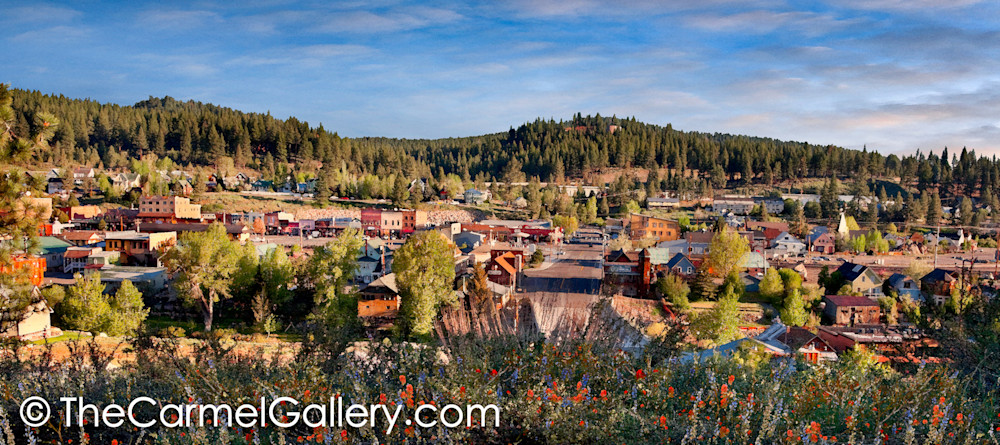 Summer Morning Truckee