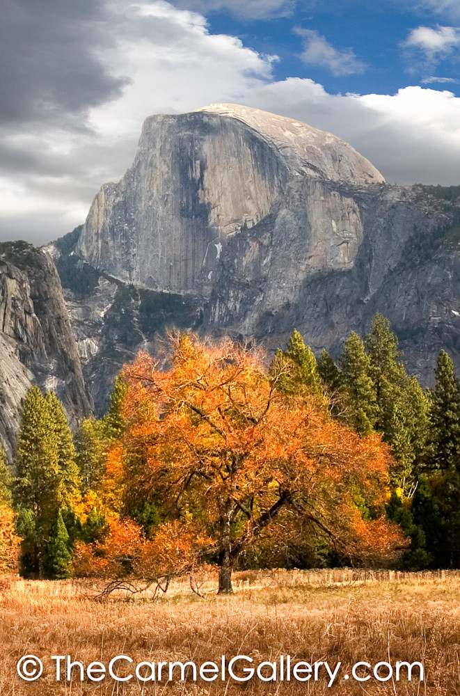 Autumn View Half Dome