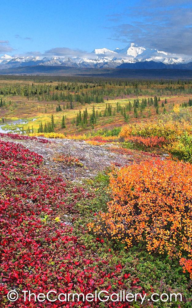 Patterns of Autumn