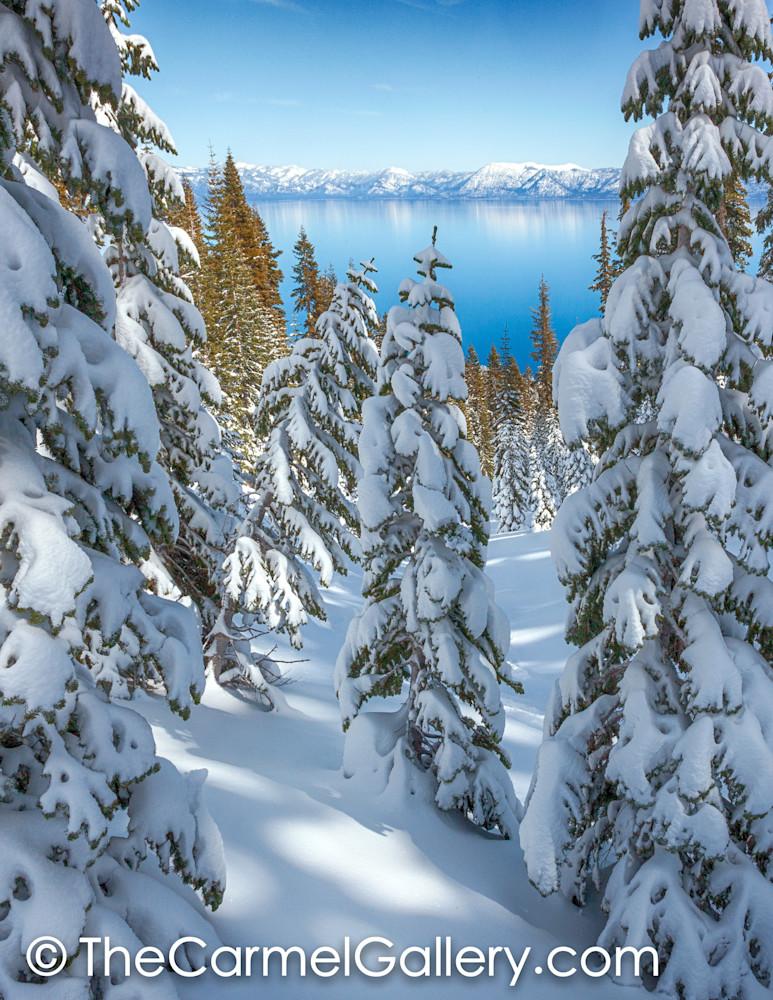 Snowy Calm Tahoe V