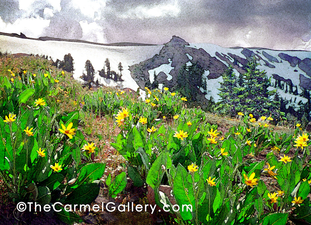Pacific Crest Mule Ears Art | The Carmel Gallery