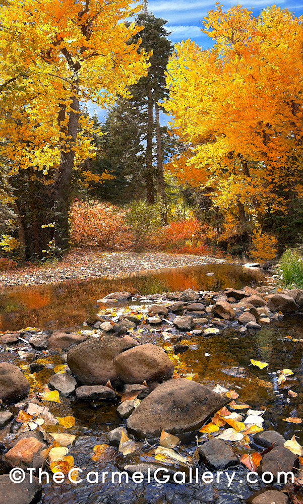 Blackwood Creek Autumn Art | The Carmel Gallery