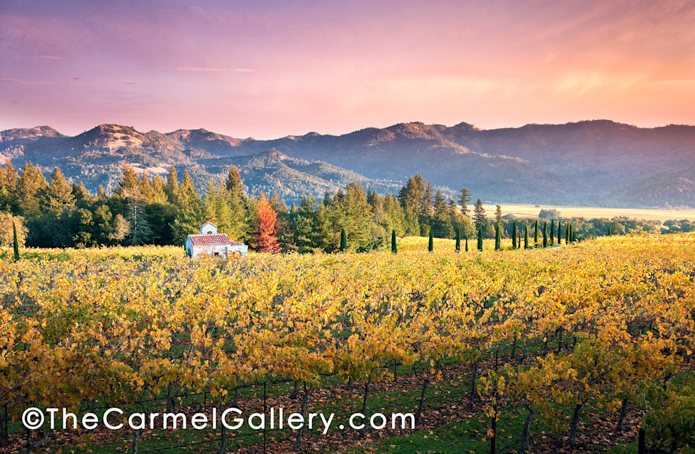 Chapel In The Vineyard Art | The Carmel Gallery