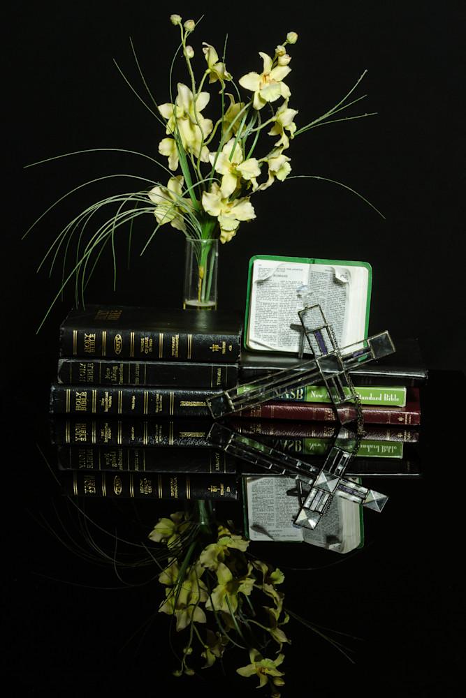 Fine Art Photographs of Flower Reflections on Black Plexi by Michael Pucciarelli