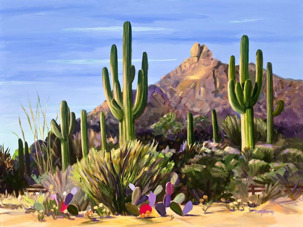 First Light | Southwest Art Gallery Tucson | Madaras