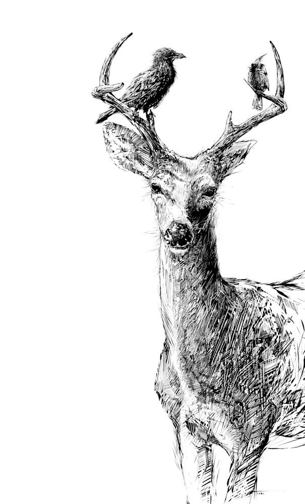 Deer and Birds: Fine Art Print by Hondo Branson.