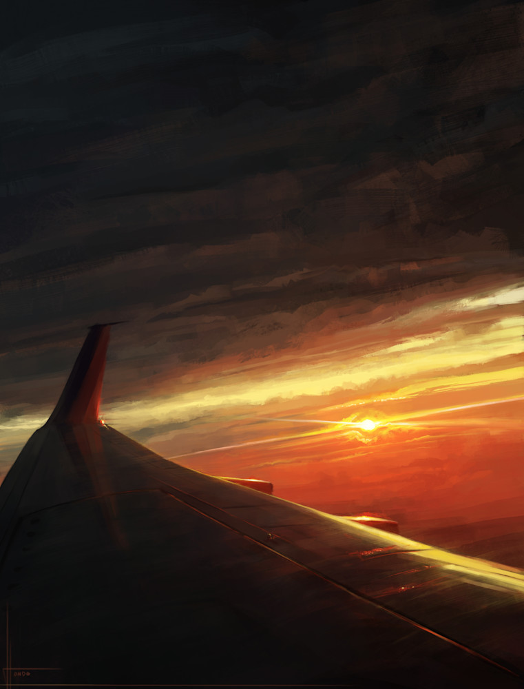 Flight 43 Wing: Fine Art Print by Hondo Branson.