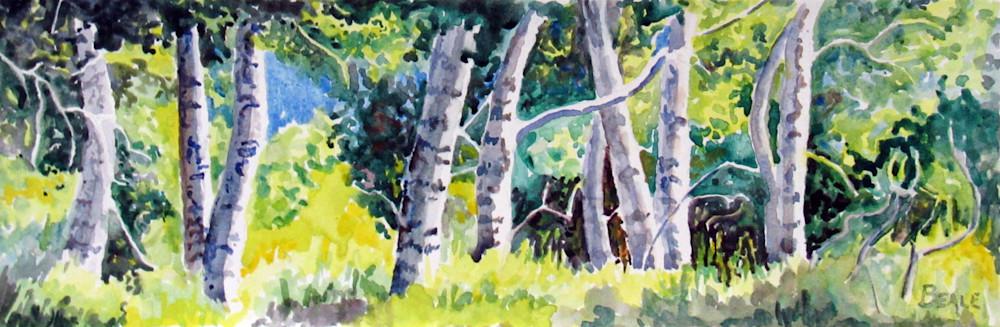 Poplars Along Brush Creek